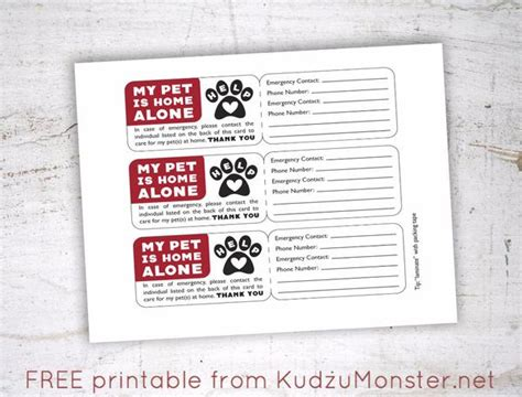 pet emergency card template free printable pet emergency contact card kudzu