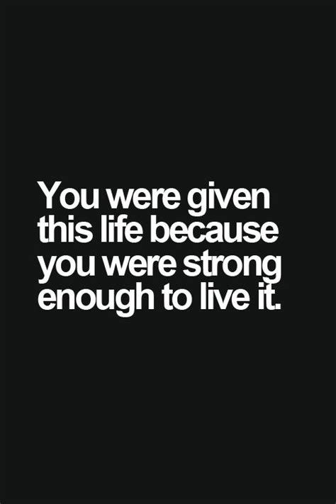 Life Quote Memes - funny stay strong quotes quotesgram