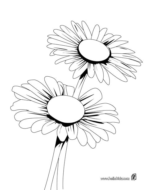free coloring pages daisy flower daisy bunch coloring pages hellokids com