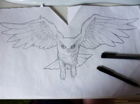 owl tattoo outline 28 flying owl designs