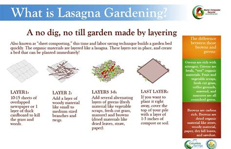 lasagna gardening   dig primer garden