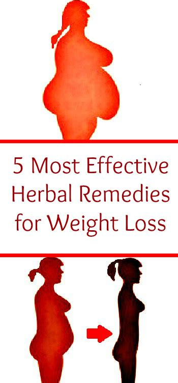 weight loss remedies 5 most effective herbal remedies for weight loss