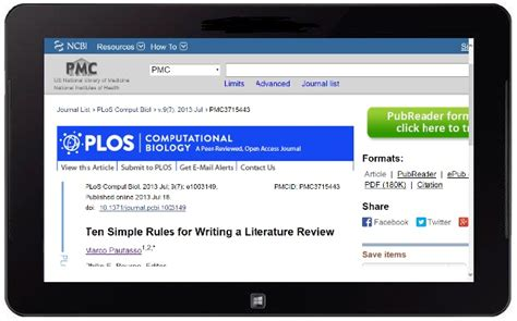 writing integrative literature reviews guidelines  examples