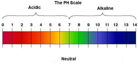 ph diagram got bladder cancer miscellaneous updates and new data