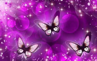 purple butterfly desktop wallpaper  cute wallpapers