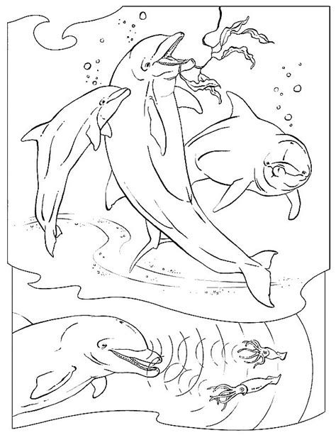 coloring book pages of sea animals sea animals coloring pages coloringpages1001 com