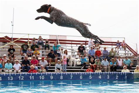 dock dogs dock dogs shootin for the moon at ravalli county fair montana regional