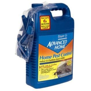 bayer home pest indoor and outdoor insect killer 1