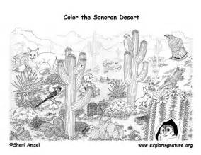desert coloring pages view