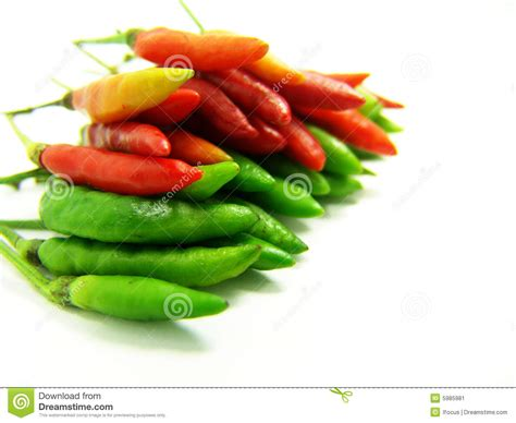 Kitchen Program Design Free hot red and green thai chili stock image image 5985981