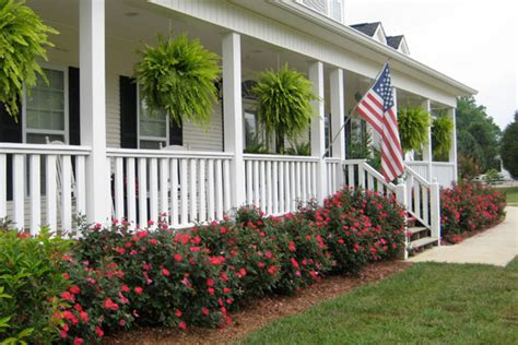best plants for curb appeal best foundation plantings landscaping plants pictures
