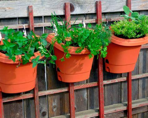 Vertikale G Rten Anlegen by Kr 228 Utergarten Anlegen Was Darf Auf Ihrem Balkon Nicht