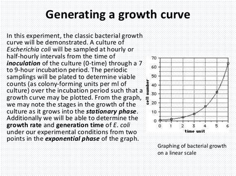 a culture of growth growth of microbes in batch culture