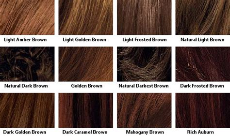 shades of hair color hair color charts