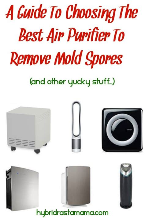 a guide to choosing the best air purifier to remove mold spores and other yucky stuff by