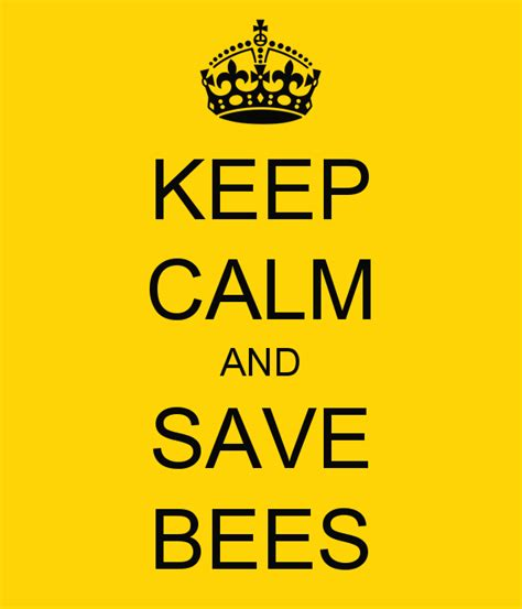 Save The Bee keep calm and save bees poster save the bee s keep calm o matic