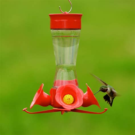 perky pet 203cpbn pinch waist glass hummingbird feeder