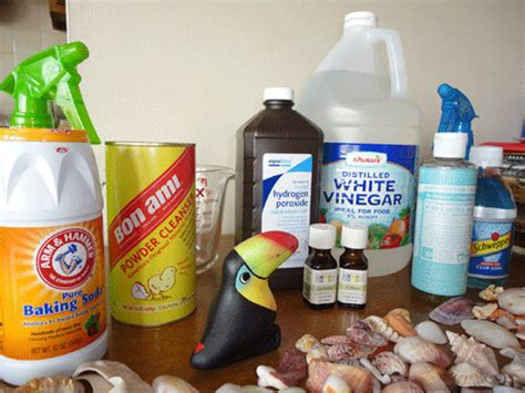 Kitchen Cleaning Products by General Kitchen Cleaning Products And Chemicals Green