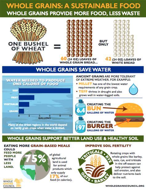 whole grains month happy whole grains month 2017 the whole grains council