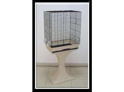 vendita uccelli da gabbia vendita uccelli da allevatore a catania tutto per gli