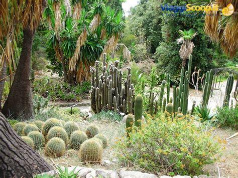 giardini di italia giardino botanico hanbury italia