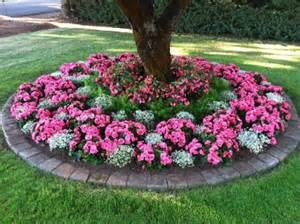 flower bed around tree plants pinterest shade plants