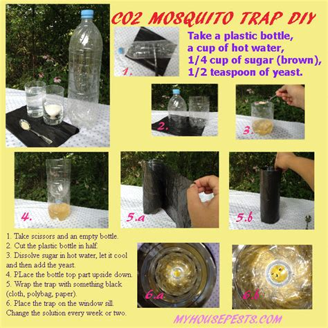 how to catch a mosquito in a room mosquito indoors protects homeowners from bites