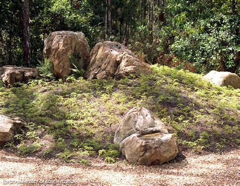 Rock Garden In Florida Florida Rock Garden Early Rock Garden Early Rock Garden Tropical View Landscape