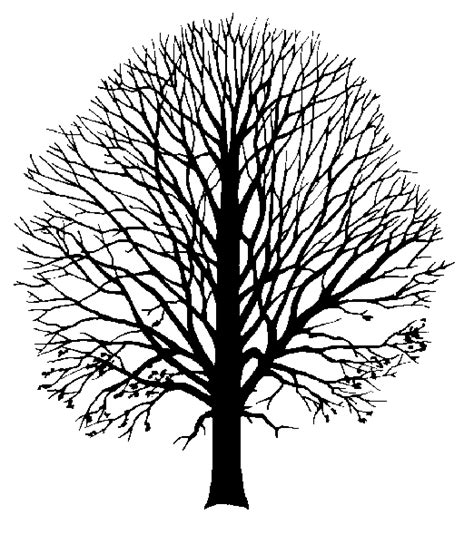 coloriages  imprimer arbres numero