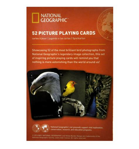 national geographic cards brilliant birds national geographic 52 picture