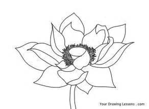 How To Draw Lotus Flowers Lotus Flower Drawing A Drawing Of A Lotus Flower If You