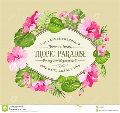 beautiful greeting card with pink tropical flowers and