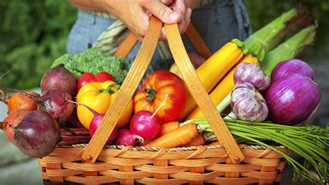 garden fresh vegetables 10 best food choices for copd everyday health