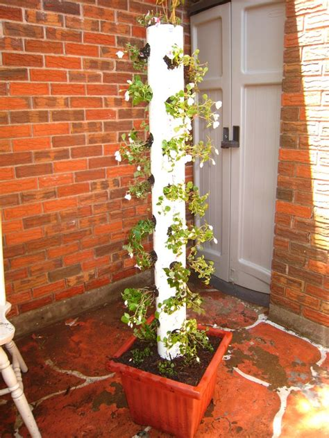 Pvc Pipe Planter Spring Garden Ideas Pvc Pipe Planter Memes