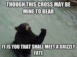 Bear Stuff Meme - 97 best funny bears memes and pics images on pinterest
