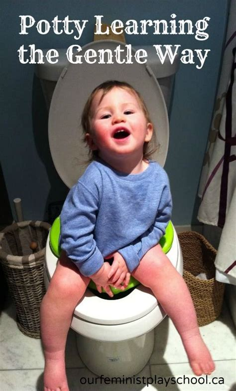 libro the gentle potty training 95 best images about potty training girls on