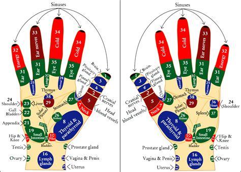 acupressure diagram of pressure points pressure points diagram human nervous system diagram