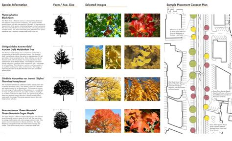 20 best images about plant palette on pinterest the