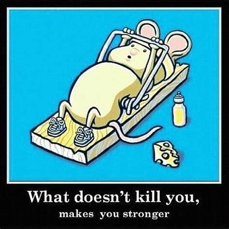 hahahah tuesday morning letsdothis motivation joke