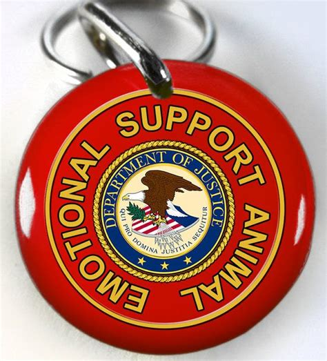 emotional support laws 1000 images about emotional support animal on vests ptsd and federal