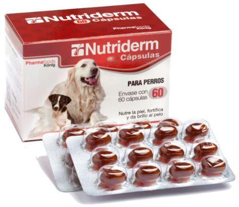 integratore alimentare per cani vetplus aktivait integratore neurologico per cani grande
