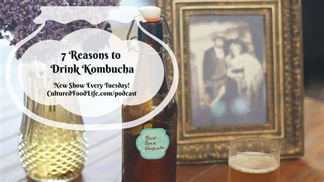 7 Reasons To Avoid Soda by Episode 11 7 Reasons To Drink Kombucha Cultured Food