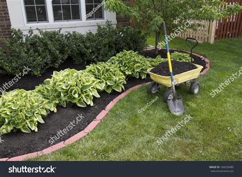 music around the house mulching bed around house bushes wheelbarrow stock photo 104220485 shutterstock