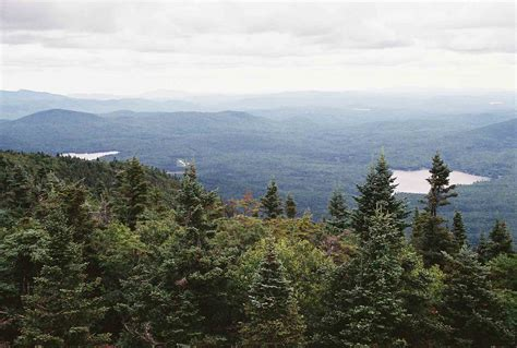 nh section 8 mm 10 2 view e from smart s mt firetower courtesy