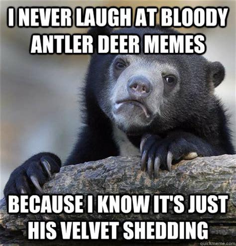 Deer Memes - deer car memes