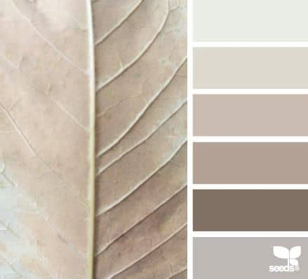 taupe colors how to use taupe color in your home decor homesthetics