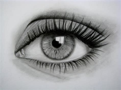 imagenes de ojos faciles de dibujar c 243 mo dibujar un ojo realista y pesta 209 as paso a paso