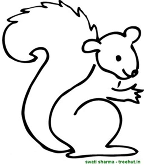 cute squirrel coloring pages squirrel coloring pages 1 treehut in