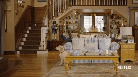 dog house gif fuller house dog gif find share on giphy
