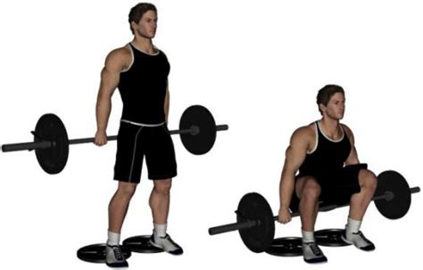 To Floor Squats by Top 15 Types Of Squats For A Toned And Powerful Lower